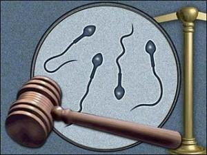 Sperm-Donor-Child-Support-300x225